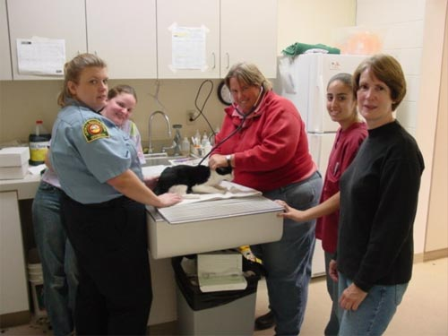Animal Care & Control Volunteers.